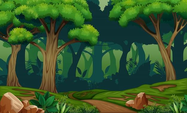 森のイラストの道で深い森のシーン Premiumベクター