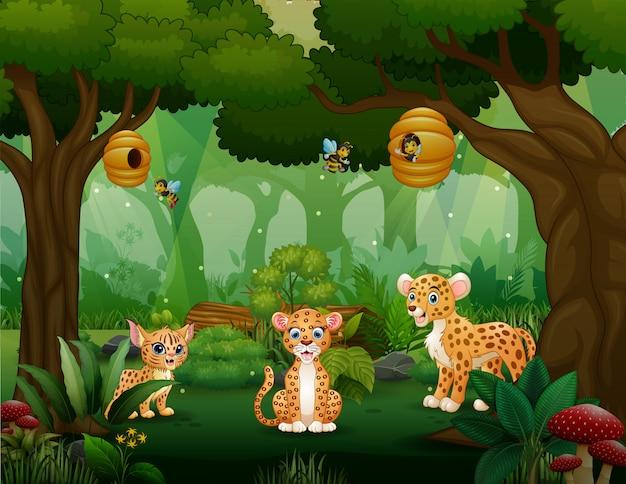 森の真ん中で遊ぶ漫画ヒョウ家族 Premiumベクター
