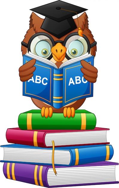 Мультфильм сова держит книгу Premium векторы