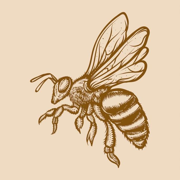 ミツバチの彫刻イラスト Premiumベクター
