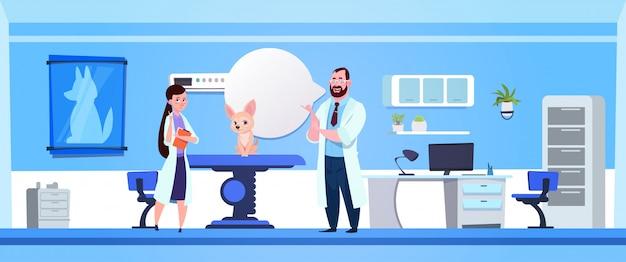 診療所の獣医学の概念で犬を調べる獣医医師 Premiumベクター
