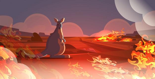 Валлаби с ребенком, спасающимся от пожаров в австралии животные, умирающие в результате лесного пожара концепция лесного пожара интенсивное оранжевое пламя по горизонтали Premium векторы