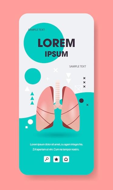 肺構造人間内臓解剖学生物学医療医療コンセプト呼吸呼吸システムスマートフォン画面モバイルアプリ垂直コピースペースフラット Premiumベクター