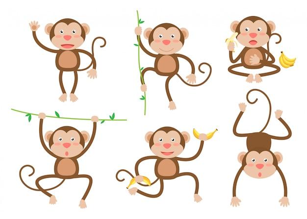 Симпатичные маленькие обезьяны мультфильм вектор в разных позах Premium векторы