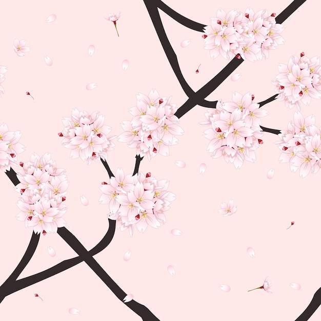 Цветок сакуры вишневого цвета на светло-розовом фоне Premium векторы