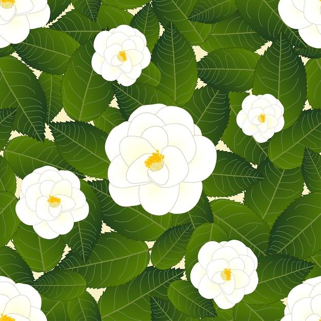 Белый цветок камелии на белой бумаге из слоновой кости Premium векторы