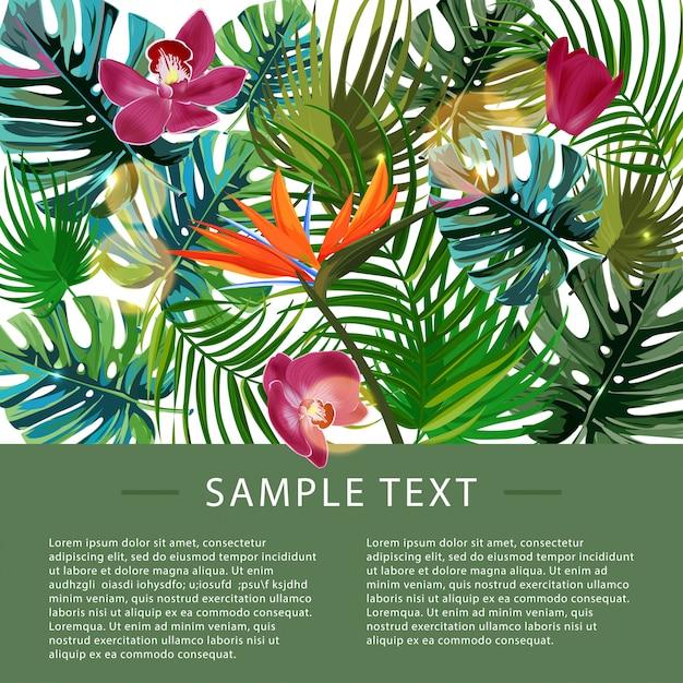 Шаблон оформления тропических растений. Premium векторы
