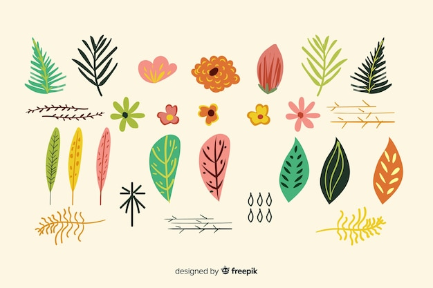 Ручной обращается цветы и листья коллекции Бесплатные векторы