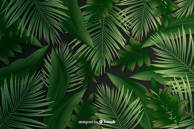 現実的な葉を持つ自然な背景 無料ベクター
