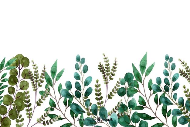 水彩画の植物と葉のフレーム 無料ベクター