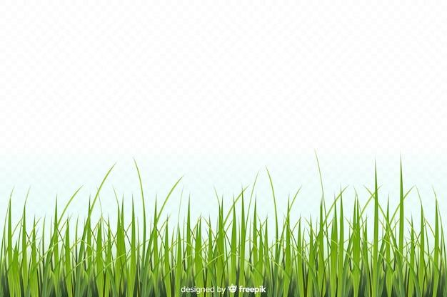 緑の芝生のボーダーリアルなデザイン 無料ベクター