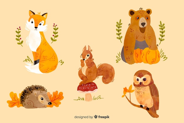 水彩秋の動物のコレクション 無料ベクター