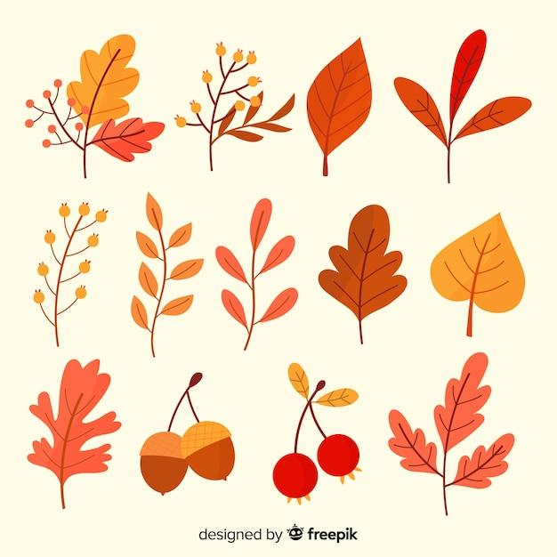 Ручной обращается коллекция осенних листьев Бесплатные векторы