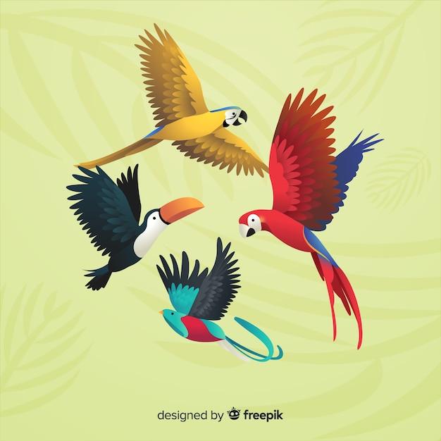 Стая экзотических птиц реалистичного стиля Бесплатные векторы
