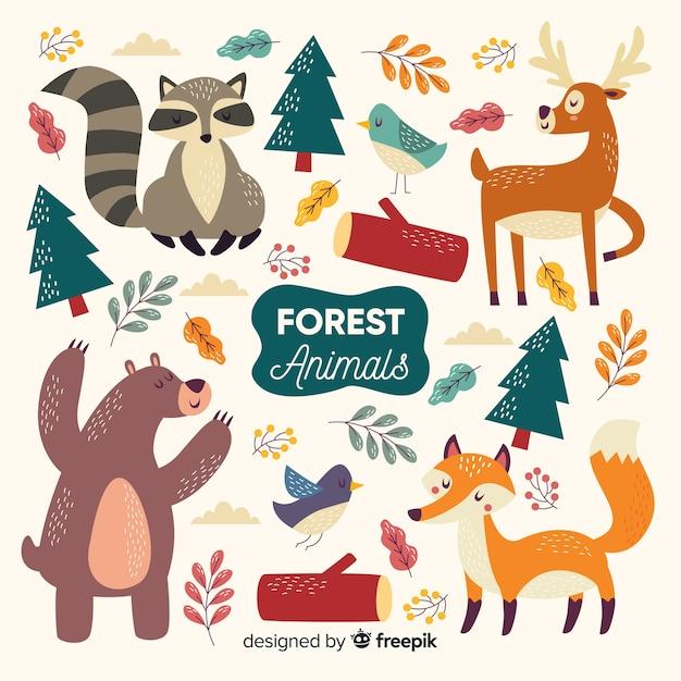 Коллекция рисованной лесных животных Бесплатные векторы