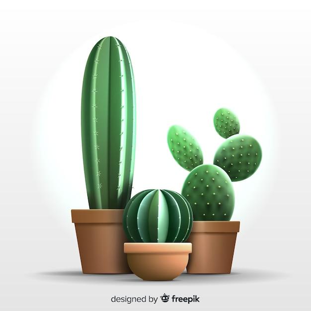 現実的なスタイルのサボテンの植物 無料ベクター