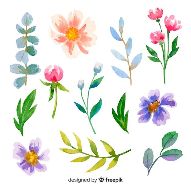 カラフルな水彩花と葉 無料ベクター