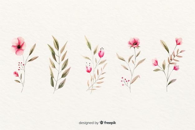 Акварель цветочные ветви коллекции Бесплатные векторы