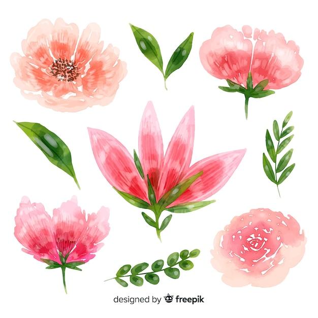 美しい花の水彩画の背景 無料ベクター