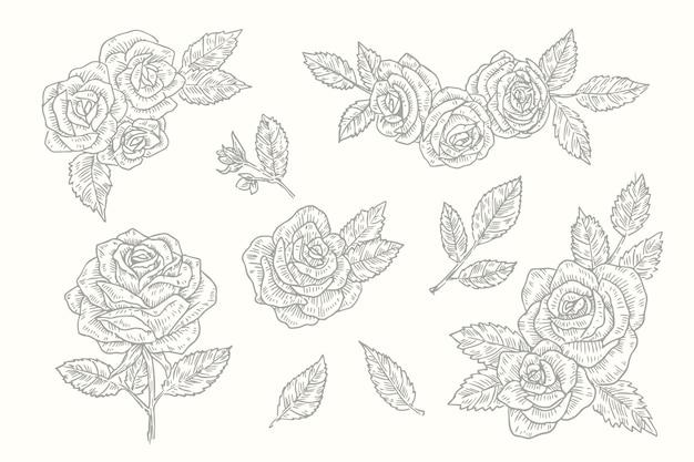リアルな手描きのヴィンテージ植物の花コレクション 無料ベクター
