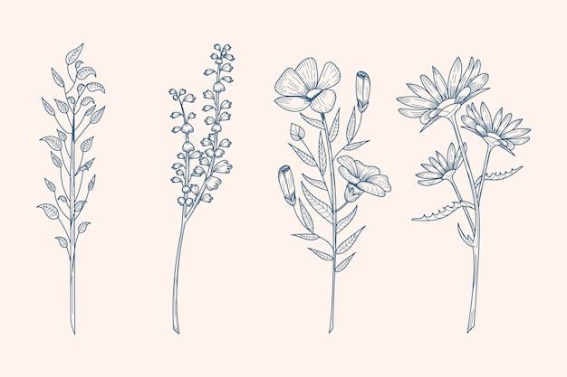 ビンテージスタイルのハーブと野生の花 無料ベクター