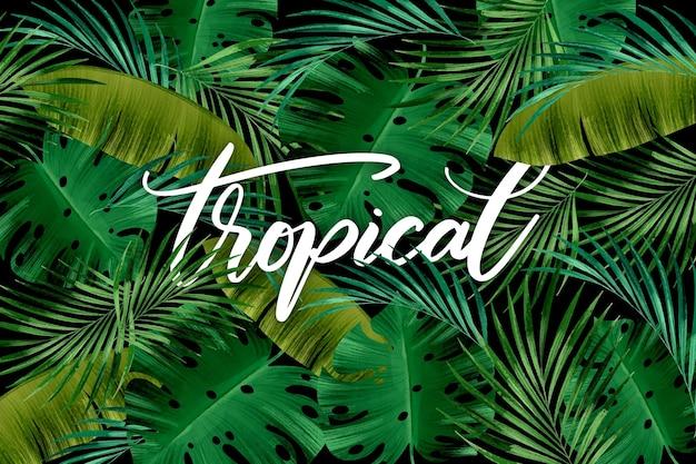 Бесшовные зеленые листья тропической надписи Бесплатные векторы