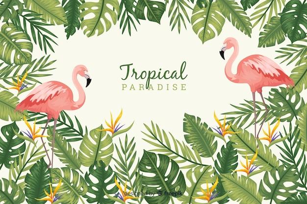 熱帯の葉と鳥 無料ベクター
