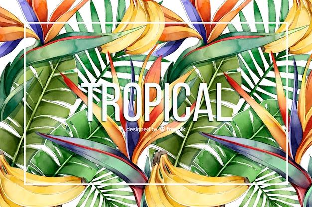 熱帯の水彩画の背景 無料ベクター