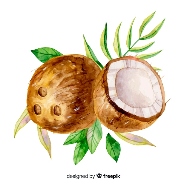 Акварель тропический кокос с листьями Бесплатные векторы