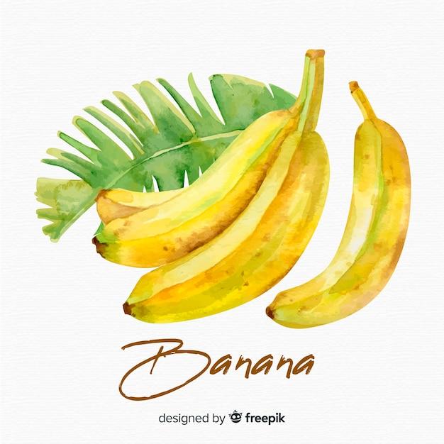 水彩バナナの背景 無料ベクター