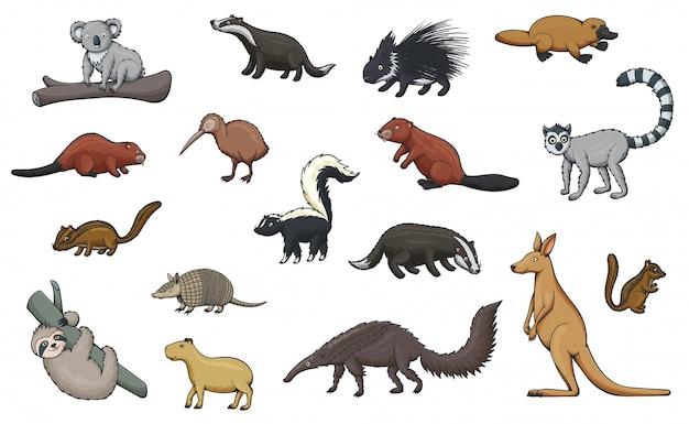 動物園と野生動物の野生動物漫画アイコン Premiumベクター