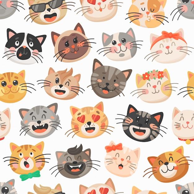 Фотография котенок кот Морда смотрит Животные | 626x626