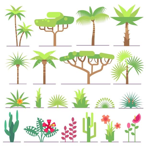熱帯植物、木々、フラワーベクトルコレクションの異なるタイプ。花とエキゾチックなパームイル Premiumベクター