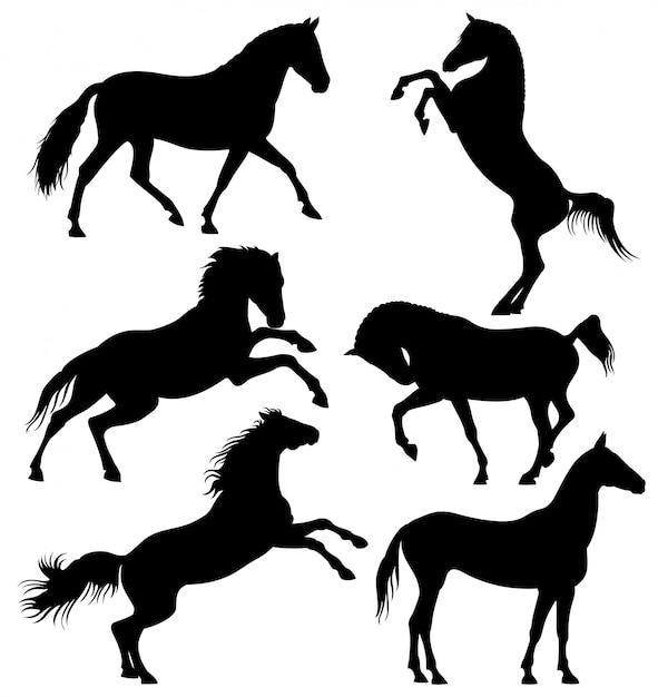 暗い野生の馬、走馬馬 Premiumベクター