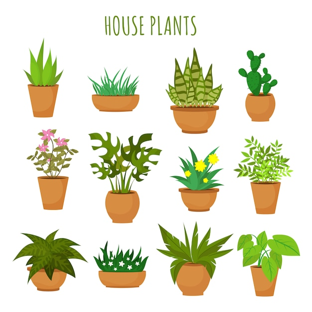 屋内家の緑の植物と白いベクトルセットに分離された花 Premiumベクター