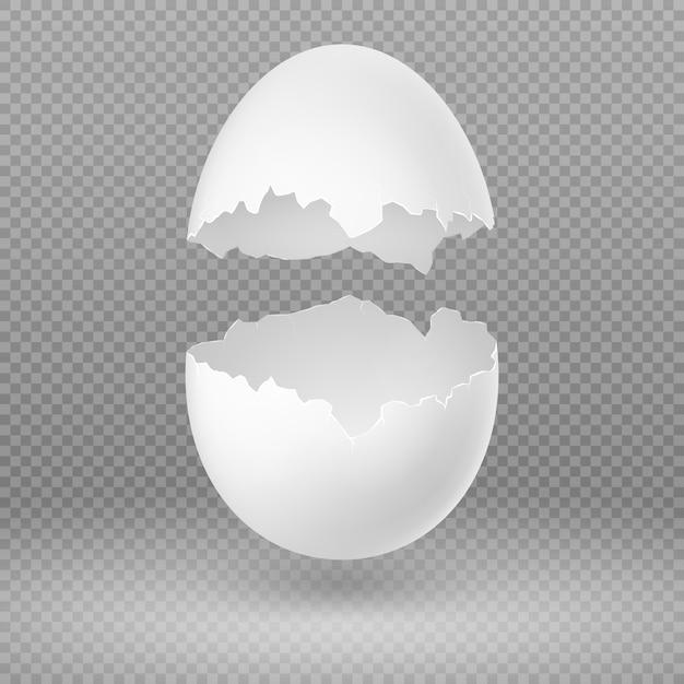 Раскрытое белое яичко с сломленной раковиной изолировало иллюстрацию вектора. яичная скорлупа хрупкое сломанное, открытое и треснувшее овальное яйцо Premium векторы