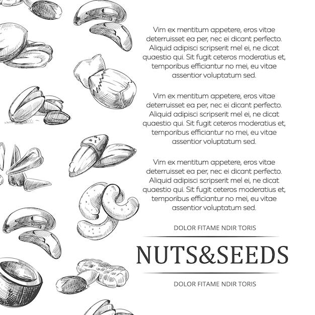 ナッツと種子のバナーまたはポスター Premiumベクター