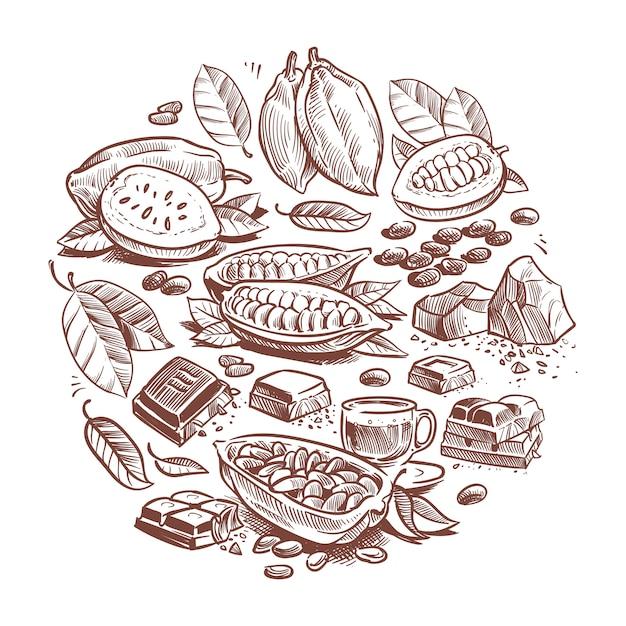 手描きのカカオ豆、チョコレートのデザイン。落書きカカオ Premiumベクター