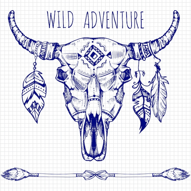 手描きの羽と矢で水牛の頭蓋骨 Premiumベクター