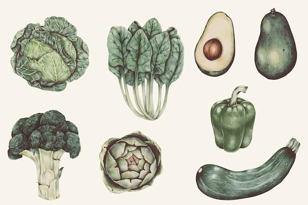 野菜の水彩画のイラストセット 無料ベクター