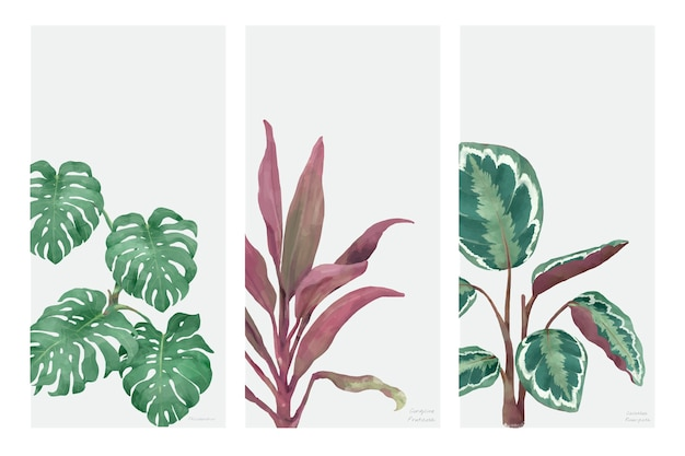 Коллекция рисованной растений, изолированных на белом фоне Бесплатные векторы