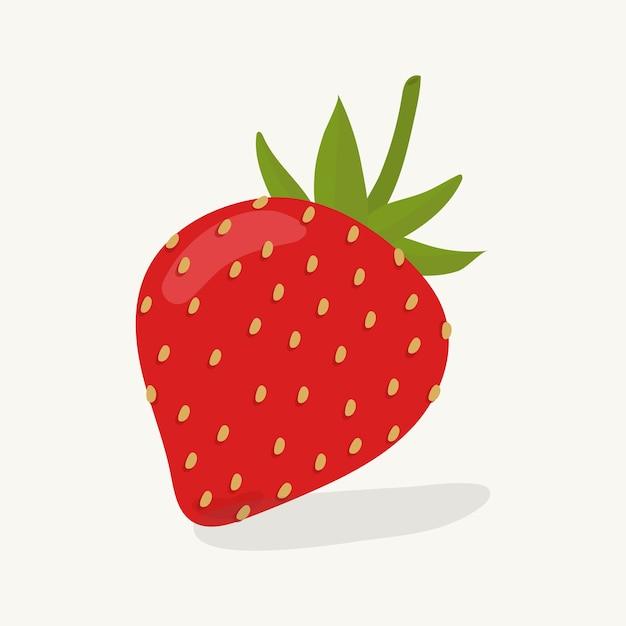 手描きのイチゴ果実イラスト 無料ベクター