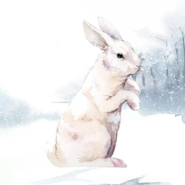 ウサギ 無料ベクター