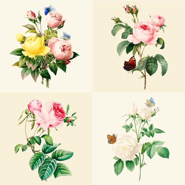 美しい咲くバラのセット 無料ベクター