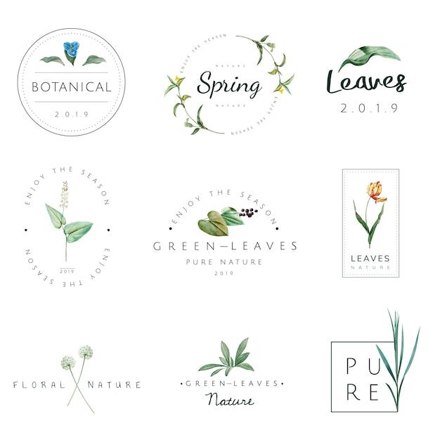 Набор векторов природы и растений Бесплатные векторы