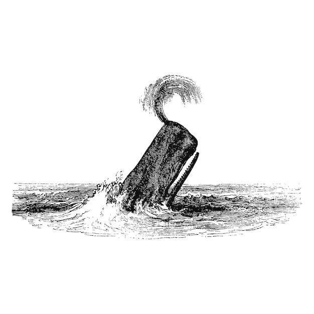 精霊のクジラのヴィンテージイラスト 無料ベクター