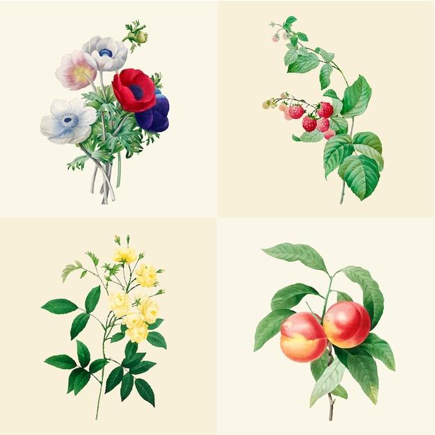 美しい咲く野生の花のセット 無料ベクター