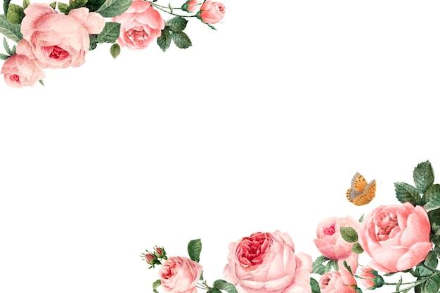 白い背景のベクトルに手描きのピンクのバラのフレーム 無料ベクター