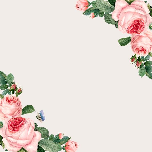 Ручной обращается розовые розы кадр на бежевом фоне вектор Бесплатные векторы