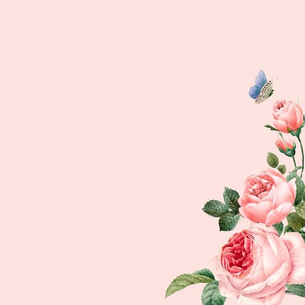 Ручной обращается розовые розы кадр на пастельных розовом фоне вектор Бесплатные векторы